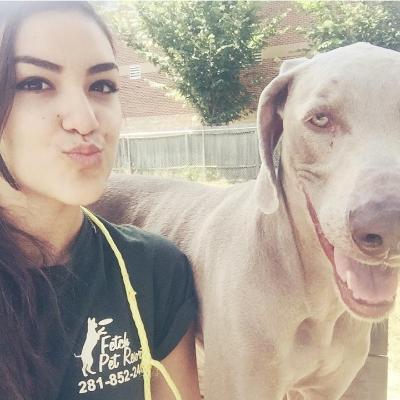 Dog Daycare in Humble & Atascocita