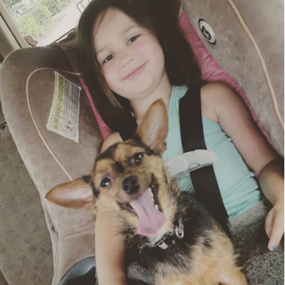 Dog Training in Humble & Atascocita